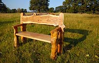 yew garden bench natural organic